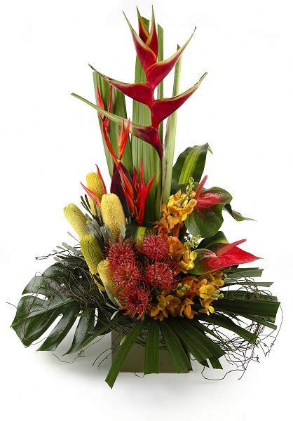 Tropical Sensation | Florist Auckland, Wellington